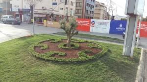 Ümraniye Belediyesi Yeşil Alan, Çevre Düzenleme ve Park Onarım Çalışmalarına Devam Ediyor