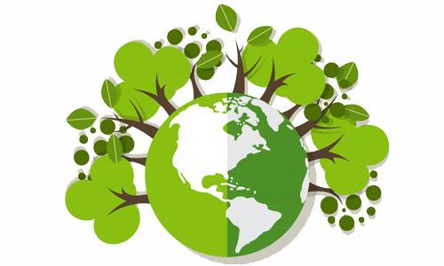 Ümraniye İlçesi Çevre Yönetimi Verileri